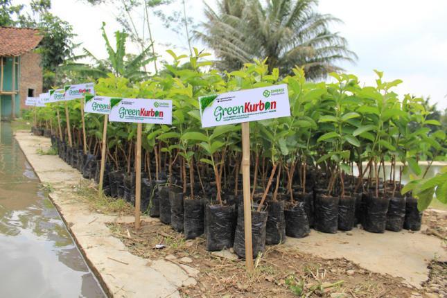 masyarakat-indonesia-kian-peduli-lingkungan
