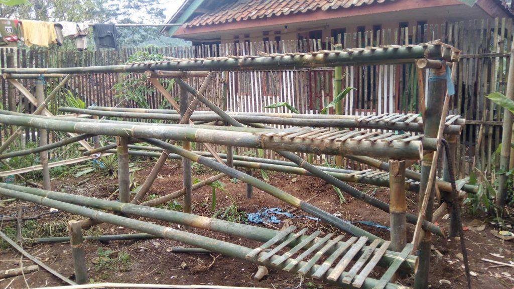 lumbung desa, cigalontang, tasikmalaya, bank bibit, budidaya tanaman