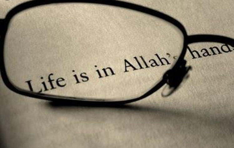 takdir, mutiara hikmah, takdir, mengubah takdir, inspiring quran, hikmah