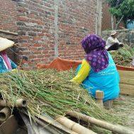 pupuk, organik, lumbung, desa, ciwangi
