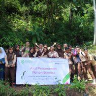 bambu, memelihara alam, banjir, erosi, lumbung bambu, sinergi foundation, air