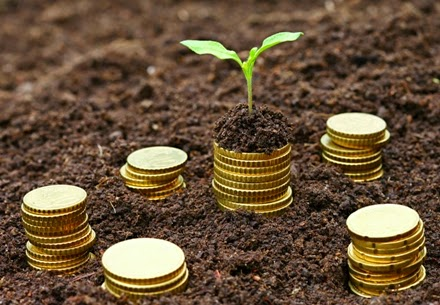 wakaf, investasi, wakaf, ekonomi negara, zakat, sinergi wakaf, pajak, ustadz budi ashari