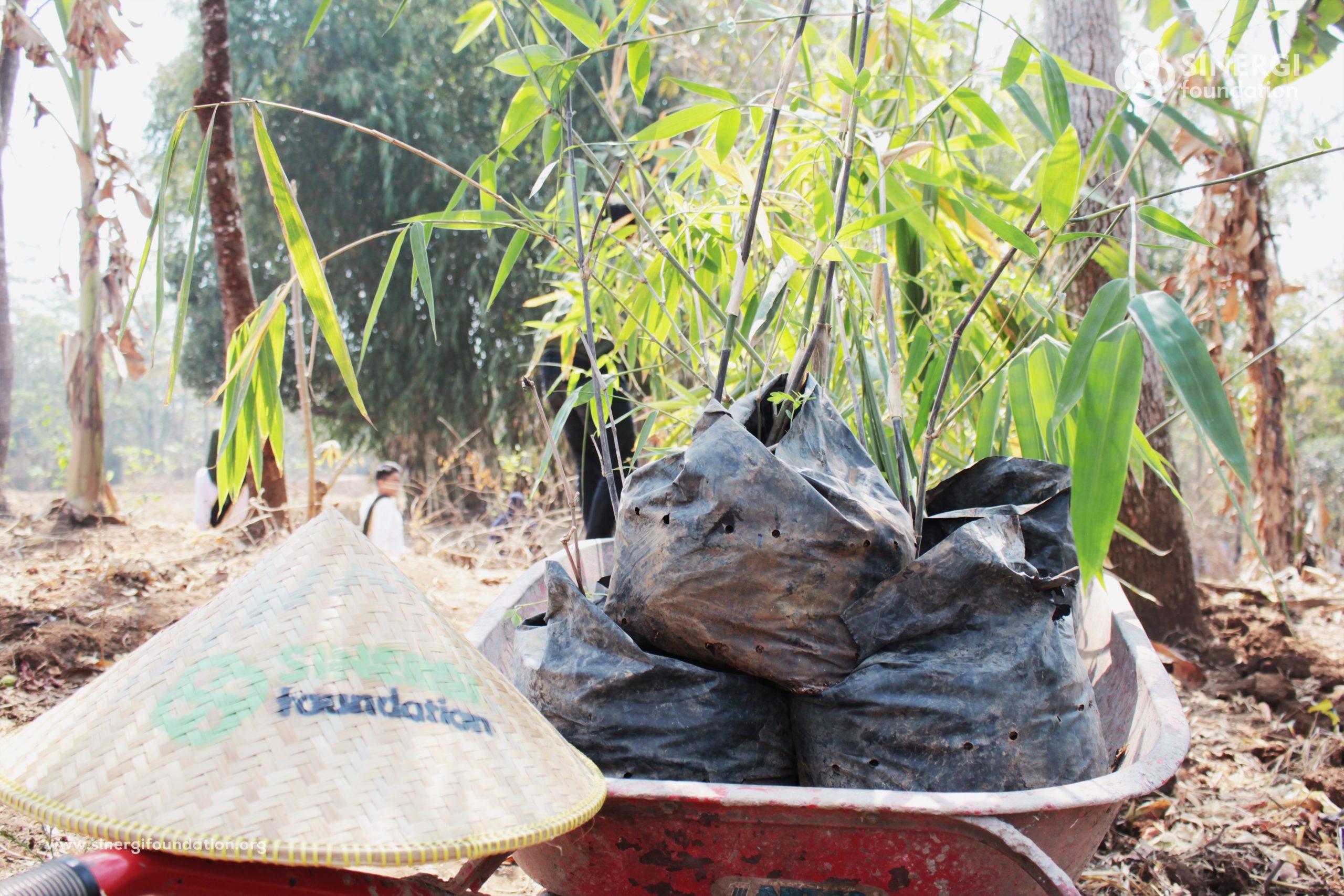 bambu, lumbung desa, selaawi