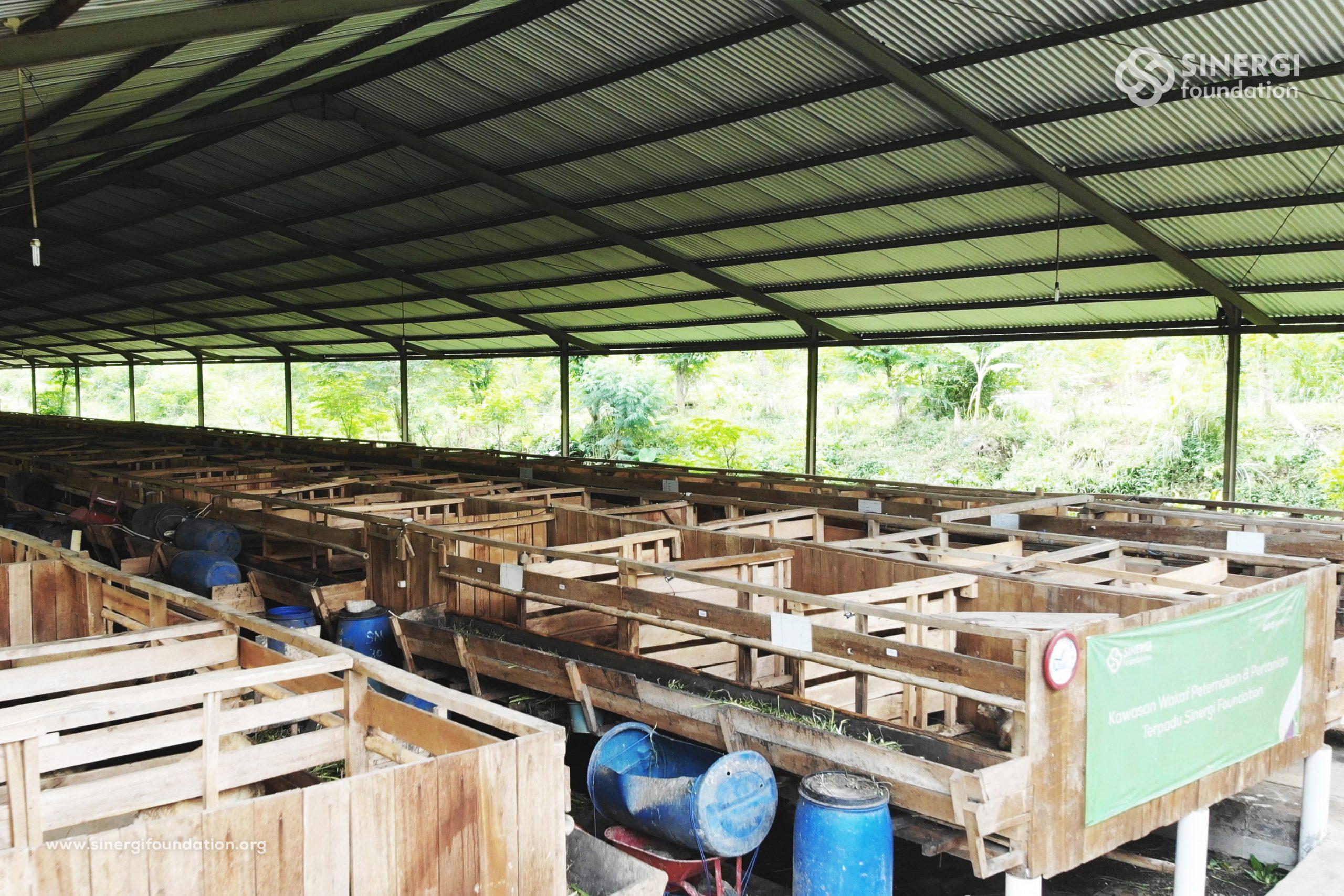 waqf integrated farm, wakaf, peternakan, pemberdayaan