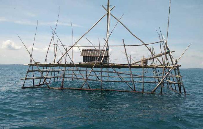 nelayan, banyuwangi