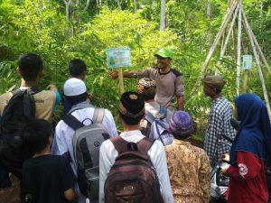 selaawi, firdaus memorial park, firdaus bamboo edupark, lumbung desa, bambu