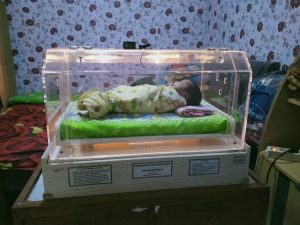 inkubator, rbc, bayi prematur