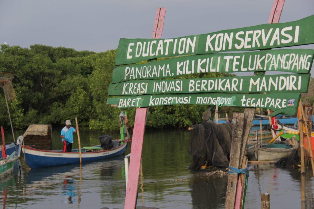 mangrove, konservasi, nelayan, banyuwangi